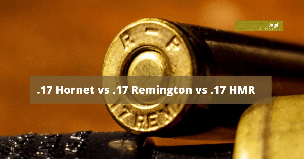 17 Hornet vs .17 Remington vs .17 HMR