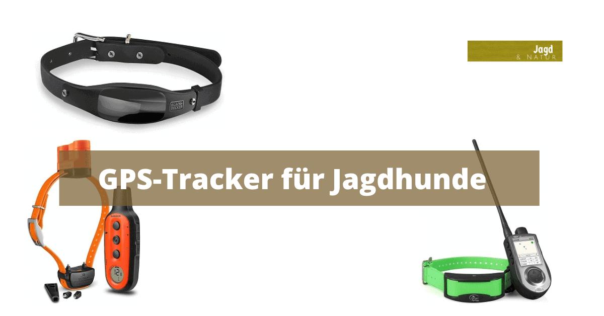 GPS-Tracker für Jagdhunde